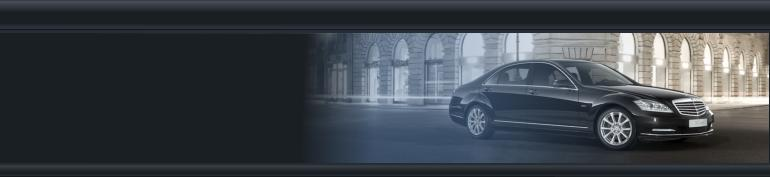 all your business transfers in holland and belgium taken care of Limo Service Nederland.htm #14